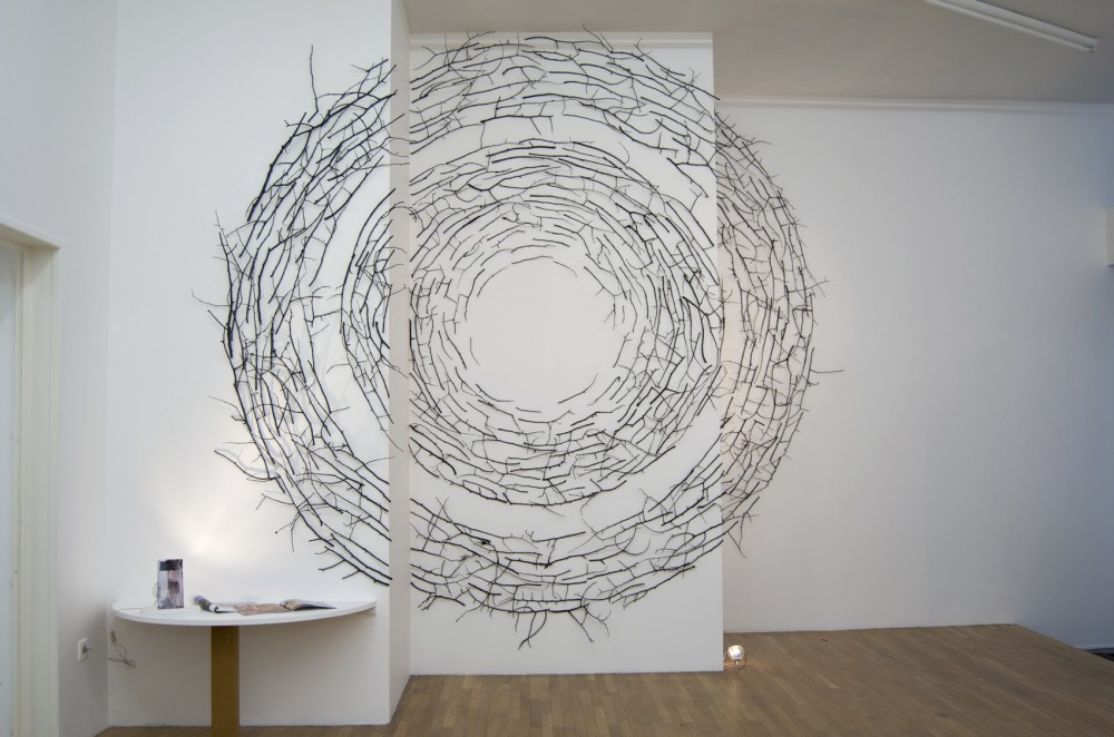 Cercles-vue-1-Lyon-2013-350x350-e1443562727407