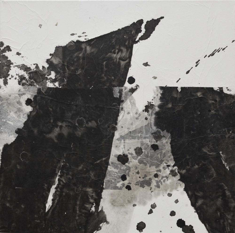 Effeuillage-noir-dencre-XXIV-2013-50x50-e1389298872762