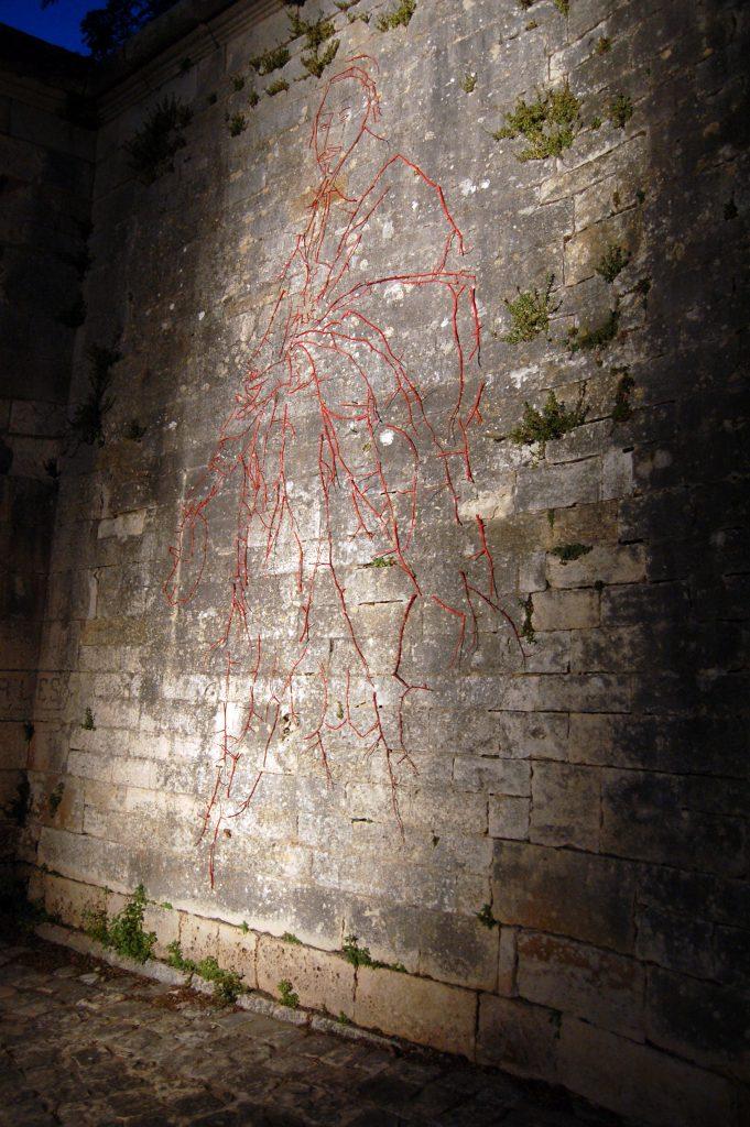 Portrait-en-pied-du-Cardinal-la-nuit