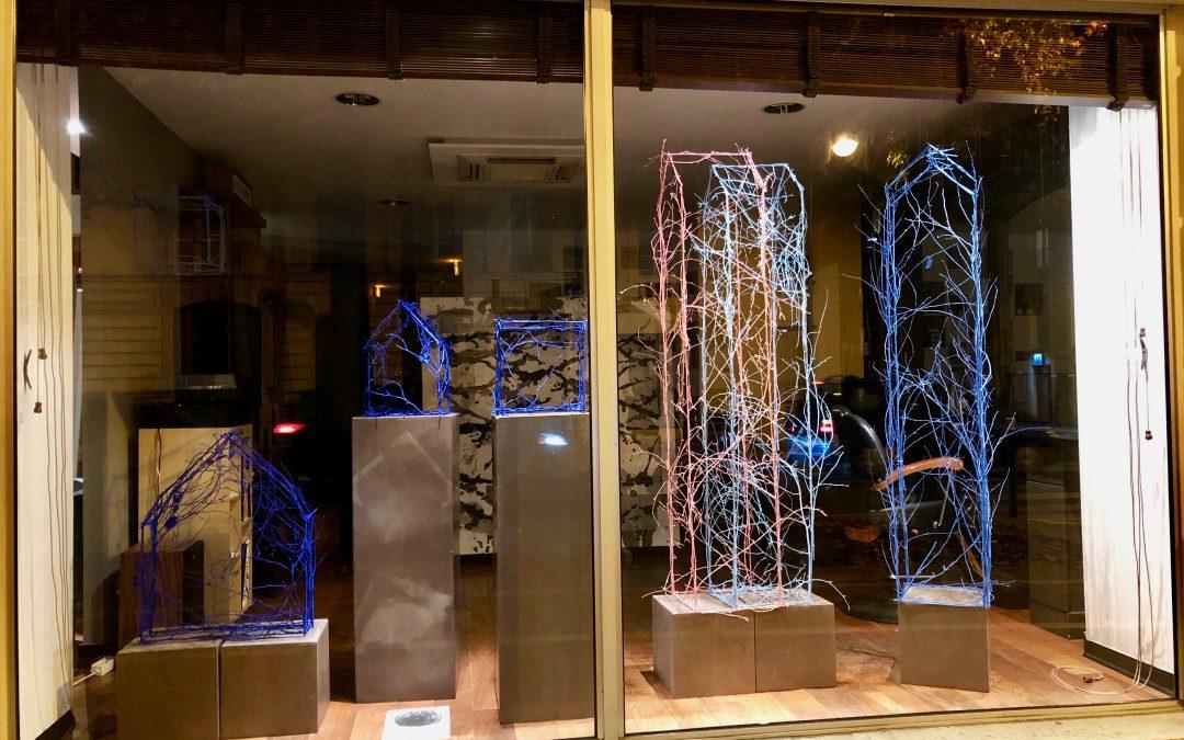 Exposition en vitrine à Angers automne 2020